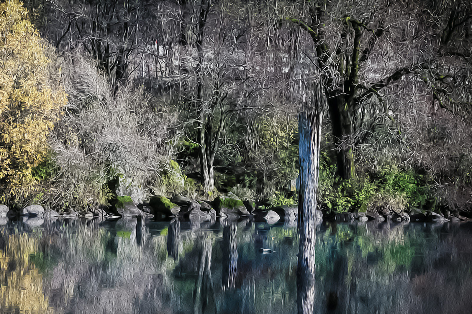 The Wicked Pond